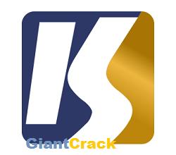 QFX KeyScrambler Professional Crack