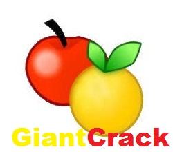 ExamDiff Pro Crack